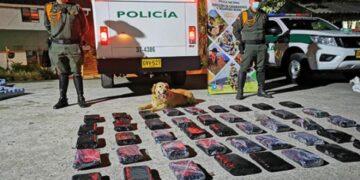 Foto tomada de: www.policia.gov.co