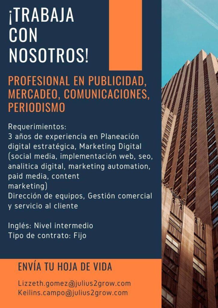 profesional en publicidad ElMetro.com.co